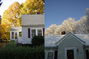 left, fall. right, almost spring.