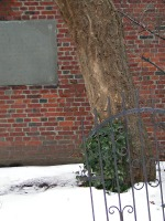 behind old north church: a tree, a wall, a gate
